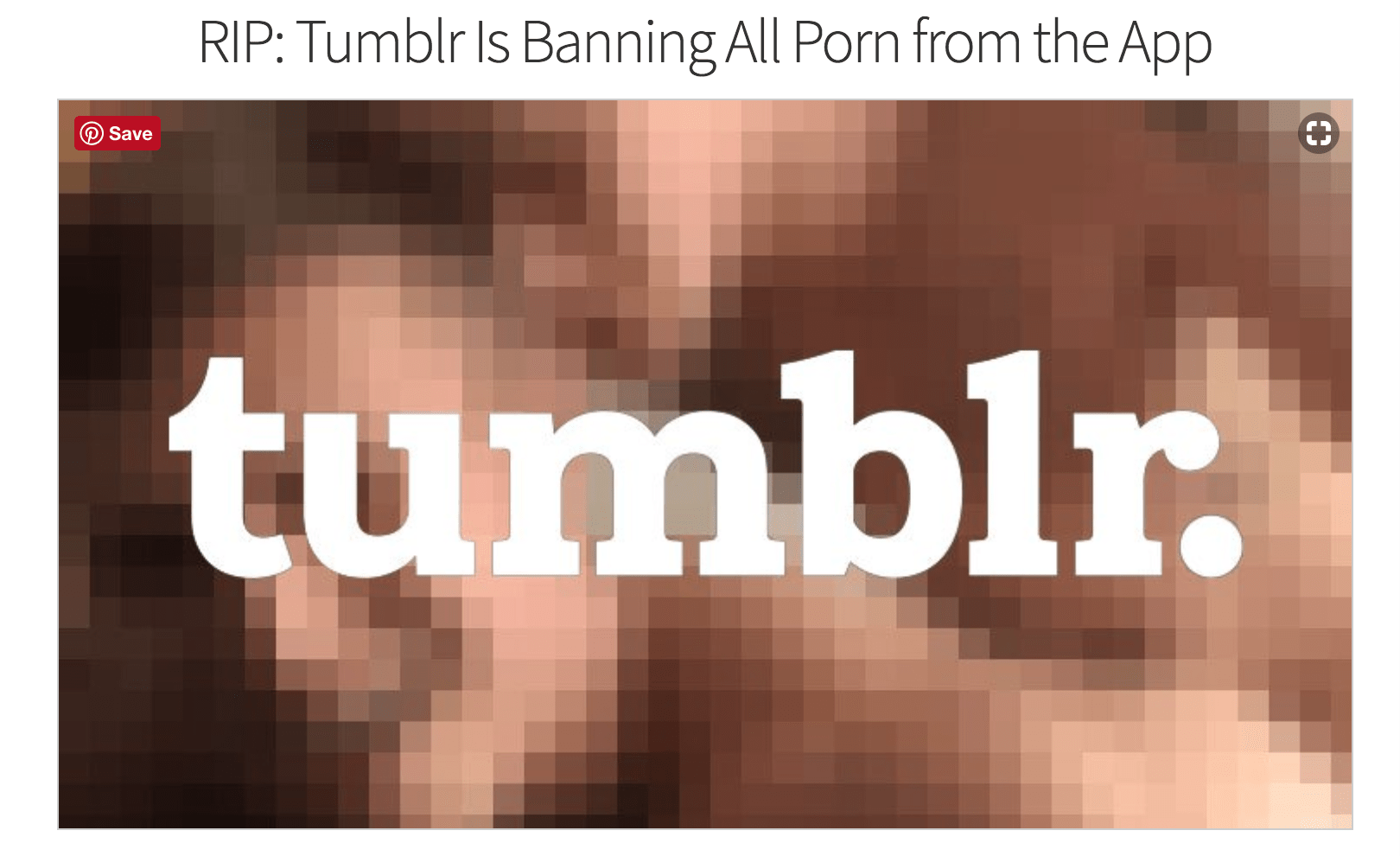 NO PORN ON TUMBLR!